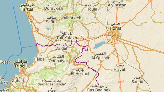 Odsouzený bojoval u syrského města Homs