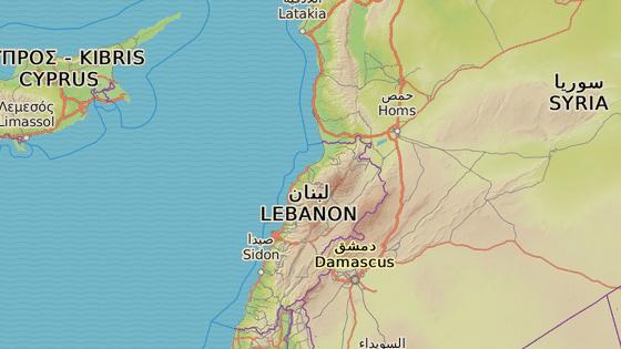 Ruské námořnictvo ostřelovalo Islámský stát u Palmýry. Pálilo z plavidel ve Středozemním moři.